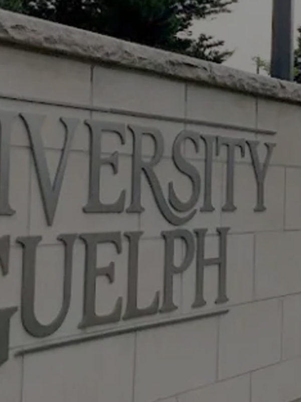 University of Guelph and Guelph Real Estate
